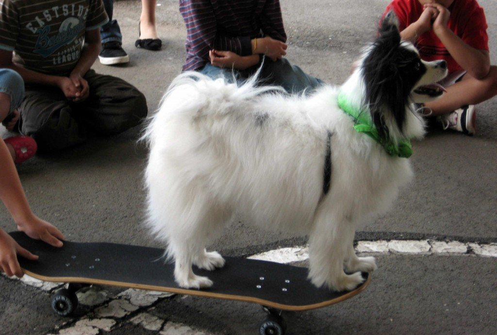 Eli, works with kids, learning to trust the skateboard